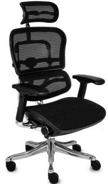 Сетчатое компьютерное кресло ERGOHUMAN PLUS купить